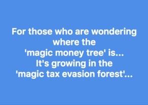 magic money tree forest copy